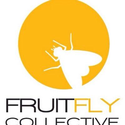 Fruitfly Update (Dec 2020)